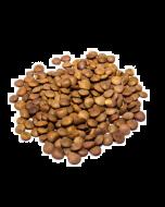Red Lentils Bulk, Organic